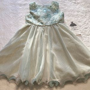 Gorgeous Rare Editions Formal Dress